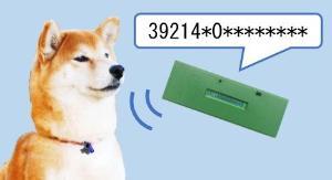 犬 マイクロ チップ